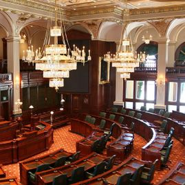 The Illinois House of Representation